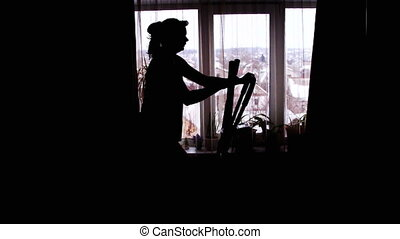 Silhouette of the Girl Engaged on the Cardio Trainer Cross...