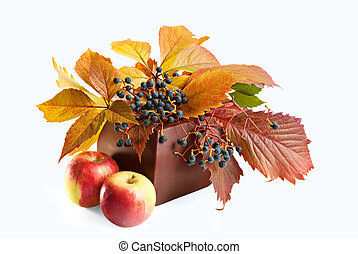 Autumn background - Wild Grape Leaves and apples