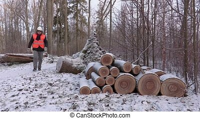 Lumberjack near pile of small logs