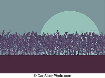Corn field evening or morning light landscape vector...