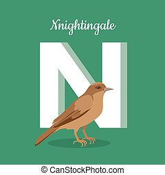 Animals Alphabet. Letter - N
