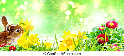 Easter bunny and flowers in front of bokeh