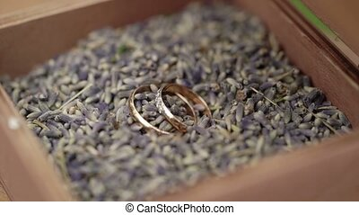 Wedding rings in a box - Wedding rings in a wooden box