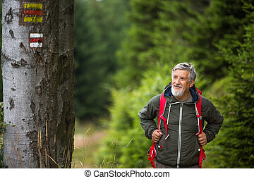 Active senior hiking in high mountains