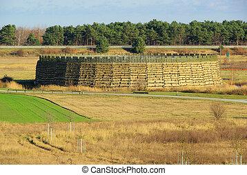 Raddusch Slavic Fort