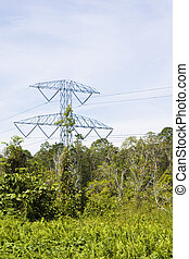 Electricity Pylon in Jungle, Brunei