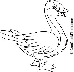 Goose - Black and white vector illustration of a domestic...
