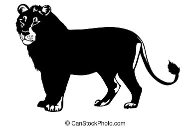 vector illustration lion on white background