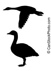 vector silhouette goose on white background