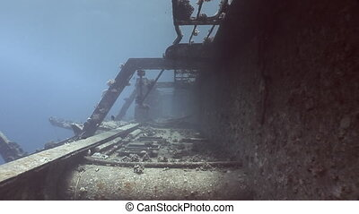 Corals on parts of sunken ship Salem Express underwater in...