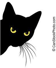 Predatory black cat. - Predatory glance home a black cat.