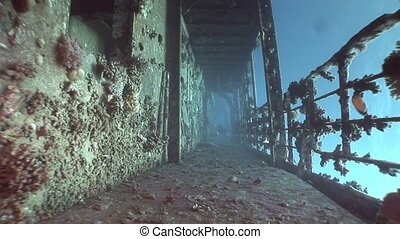 Deck of ship wrecks Salem Express underwater in the Red Sea...