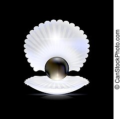 dark, black pearl and shell - black background and the large...