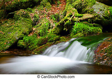 Mountain stream in the national park Sumava-Czech Republic