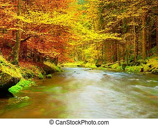 Autumn river. Colorful forest above mountain river. Water...