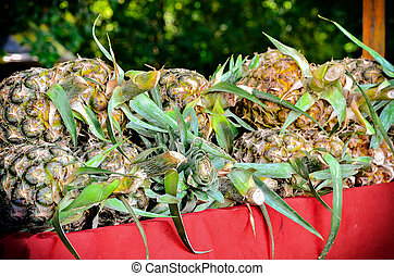 pineapple plant on sell in market