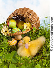 Cute duckling with easter eggs