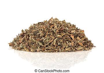 Damiana Aphrodisiac Herb - Damiana aphrodisiac herb leaves...