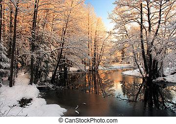 invierno, río, salida del sol, luz