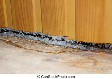 effects of plastic paneling on old house, damp from the...