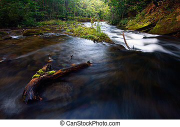 Stream in woods in summer with rocks and foliage.
