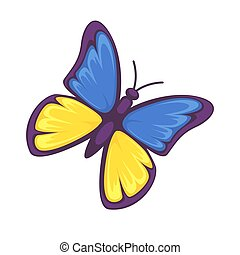 Butterfly in yellow and blue colors isolated on white...