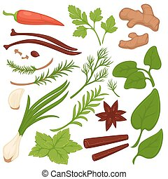 Plants and herbs colorful collection on white. Vector...