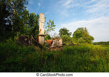 Abandoned house full with green.