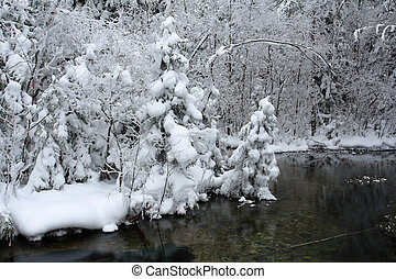 Winter scenery in frosty day - Winter scenery landscape in...