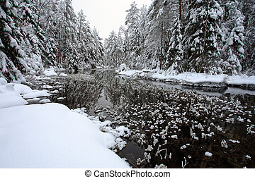 River and hoarfrost in winter forest in europa, Estonia