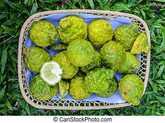 the bergamot fruit group in basket