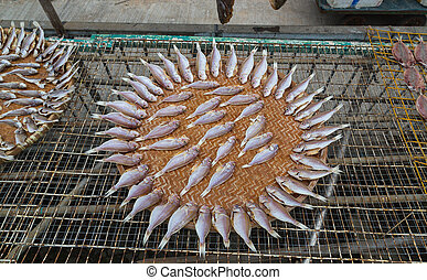 Dried fish in Tai O Lantau Island Hong Kong.