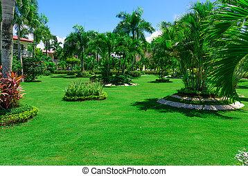 area Dominican Republic hotel - area hotel dominican...