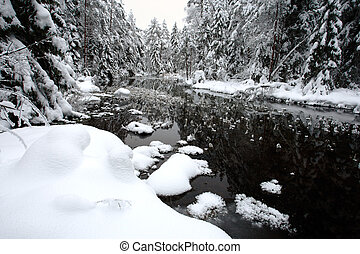 White winter landscape a beautiful landscape the river and...