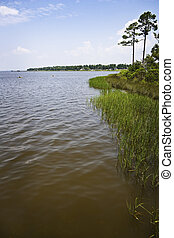 Quiet Gulf Coast Bay - A quiet Gulf Coast bay with marsh...