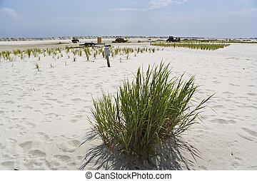 White Gulf Coast Beaches Cleaned - Cleaning equipment sits...