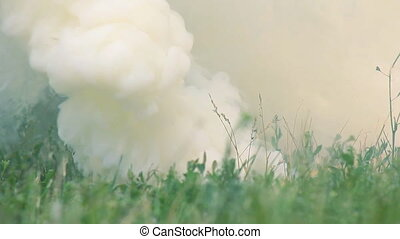 Smokescreen on the Grass - Smoke in the beginning of the...