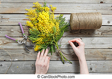 Woman hands make bouquet of mimosa. bandages twine and Gardening scissors on rustic wooden table