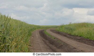 Wheat Field Road