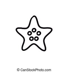 Starfish sketch icon. - Starfish vector sketch icon isolated...