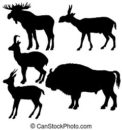 silhouettes of the wildlifes on white background
