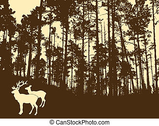 silhouette of the deers in thick wood