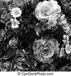 Rose black and white color concept.