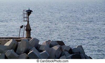 Mole malta lighthouse