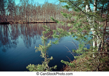 Spring flooding on the river - Russian landscape.Spring...