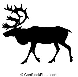 vector silhouette of the reindeer