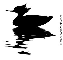 vector drawing fish duck on white background