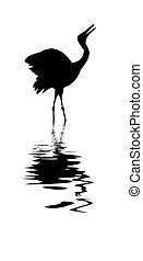 vector silhouette of the crane amongst water