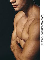 joven,  muscular, estudio, Posar, guapo, hombre