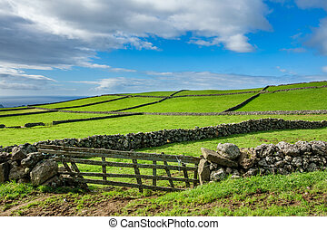 Farm fields in the Terceira island in Azores - Hill of farm...
